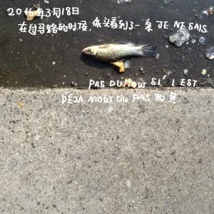 WeChat_1459961533