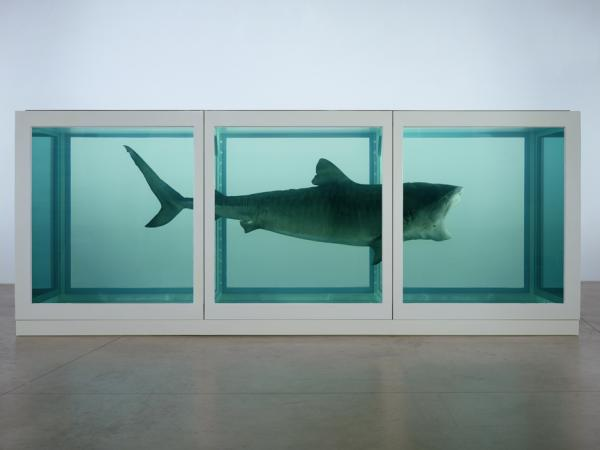 http://www.mrexhibition.net/wp_mimi/wp_mimi-content/uploads/2012/07/voyage-londres-jo-damien-hirst-tate-thumb-940x705-24372-600x450.jpg