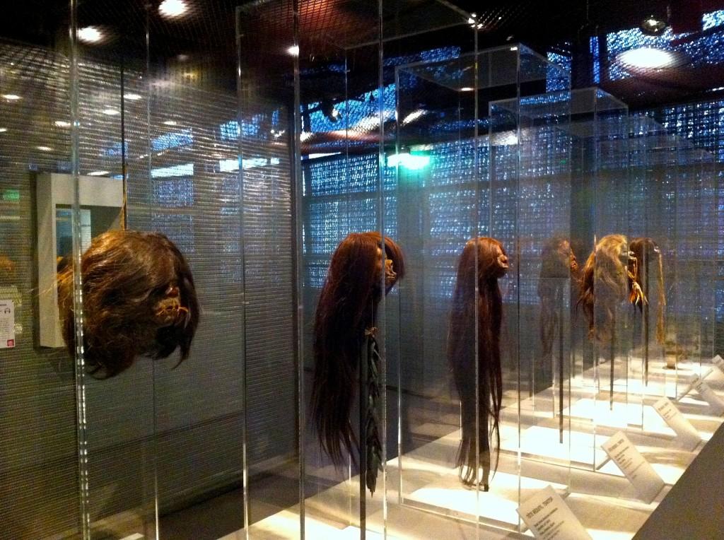 cheveux expo tete2